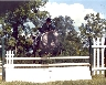 Jumping Belinda at an Appaloosa show at Foxcroft School in Middleburg, VA.