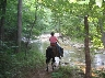 Horse and rider peacefully riding down to a stream crossing.