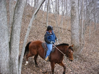 Horse and rider coming down a steep hill in the Winter-bare woods.